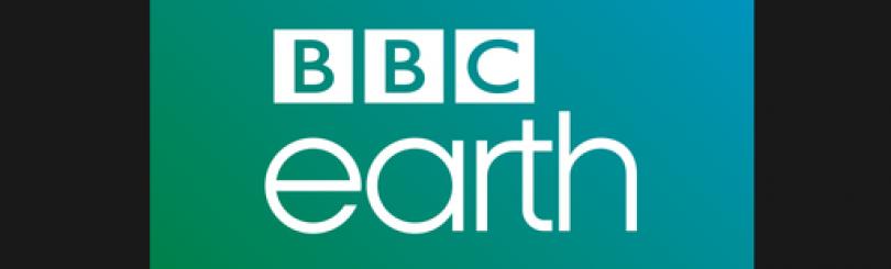 Dating quiz bbc